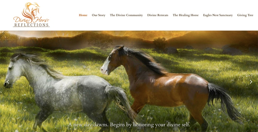 divine horse reflections